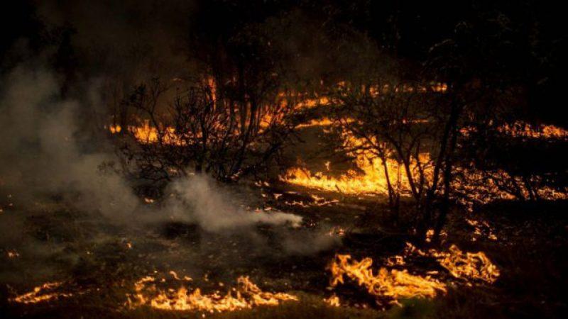 Se constituyó Mesa Técnica Regional de Incendios Forestales