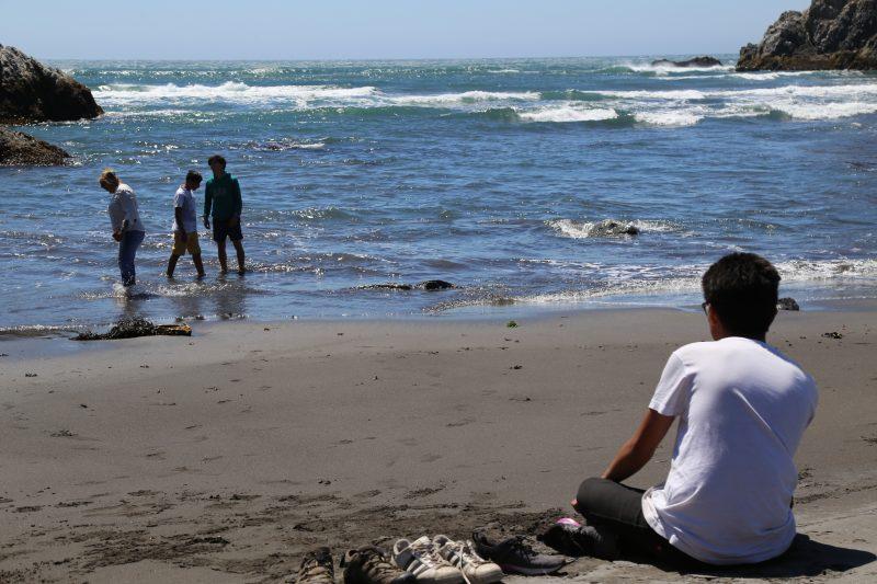 Playa Topocalma luce nueva cara tras ser reabierta a la comunidad