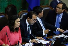 Cámara de Diputados aprueba aumentar a 20 días las vacaciones