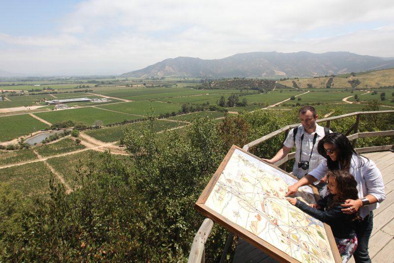 """""""Brinda con sus mejores vinos"""": Valle de Colchagua será sede de Conferencia Mundial de Turismo Enológico de la OMT"""