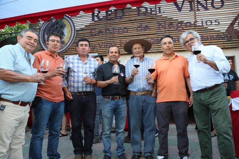 Santa Cruz albergó la Primera Exhibición y Cata de Vinos de Colchagua