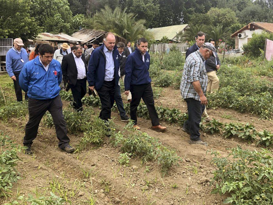 "Ministerio de Agricultura decreta ""Zona de Emergencia Agrícola"" a Machalí y comunas afectadas por granizada"