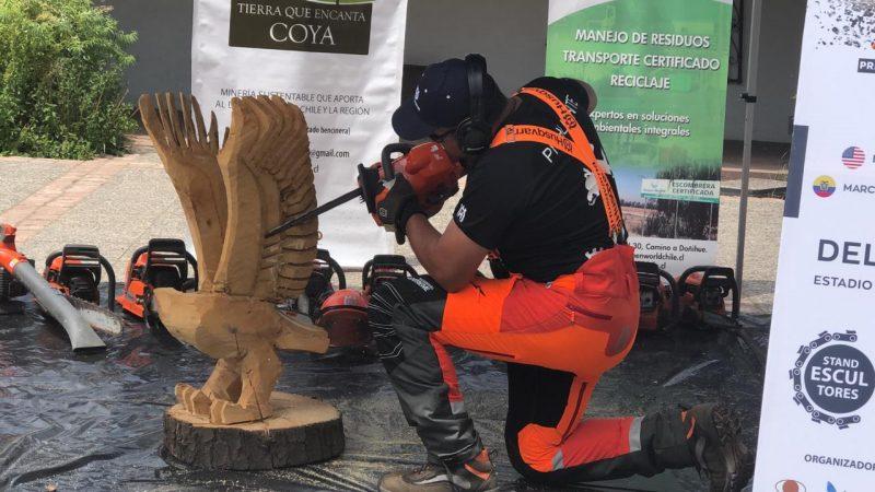Desde el lunes Coya será el epicentro mundial con el Encuentro Internacional de Escultores en Motosierra