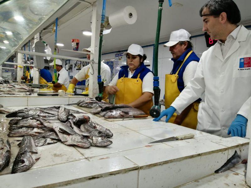Semana Santa: Seremi de Salud fiscaliza pescaderías