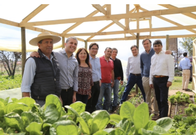 Intendente Masferrer enviará al CORE iniciativas que irán en directo beneficio de agricultores de O´Higgins